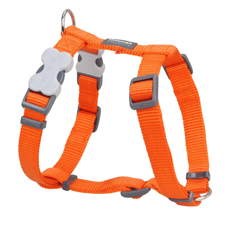 Red Dingo Classic Dog Harness, Large, orange
