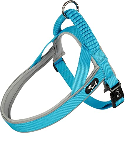 Dog Pet Step-in Harness Puppy Training Safety Vest Walk Control Strap S-XL