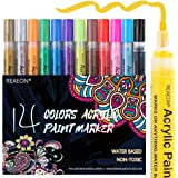 Paint Pens for Rock Painting, Stone, Ceramic, Glass, Wood, Canvas, Acrylic Paint Markers Pen Medium Tip Set of 14 Colors…