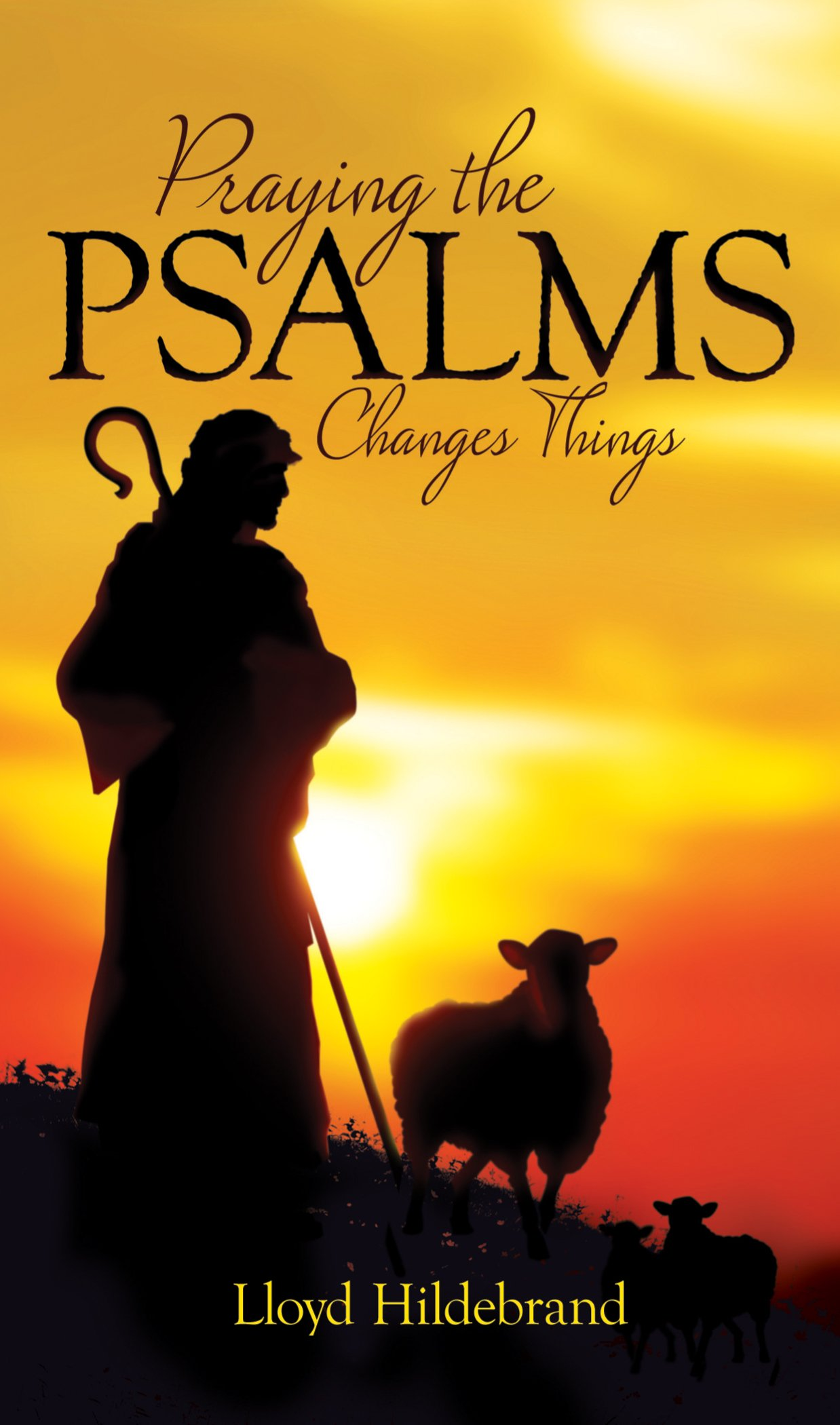 Praying The Psalms Changes Things: Lloyd Hildebrand: 9781610361262