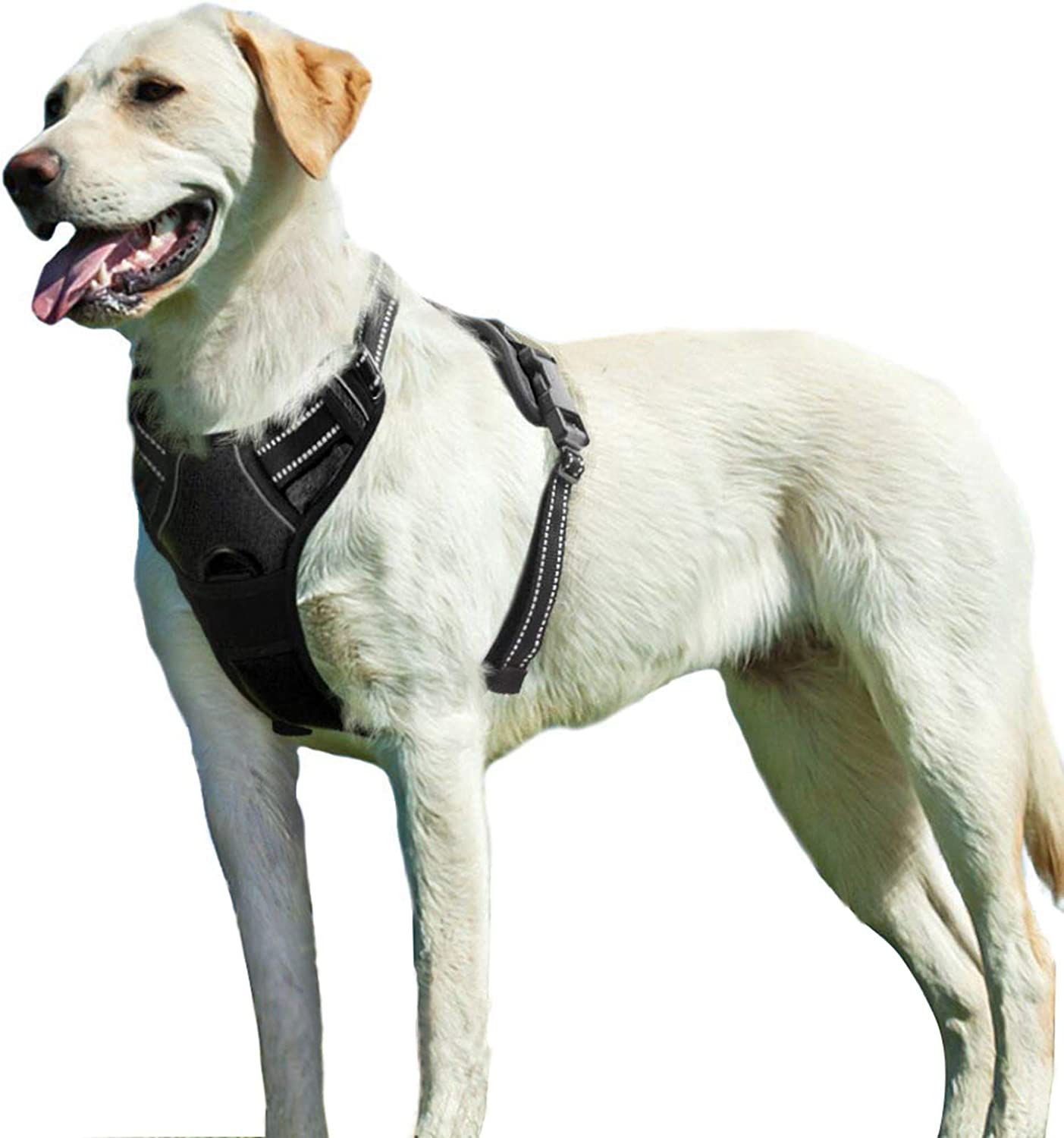 Eagloo No Pull Dog Harness Review