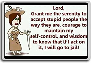 Lord, Grant Me The Serenity To Accept Stupid People... - funny quotes fridge magnet
