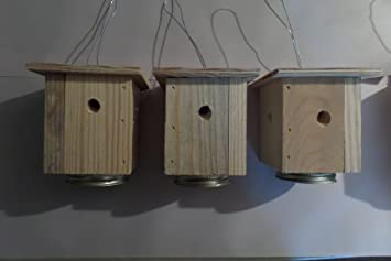 Simple Box Carpenter Bee Trap For Mason Jar