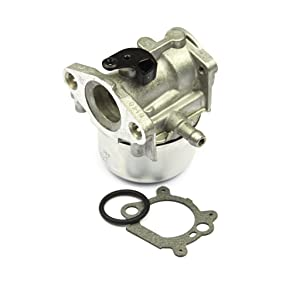Briggs & Stratton 799868 Small Engine Carburetor Replaces for 498254, 497347, 497314, 498170