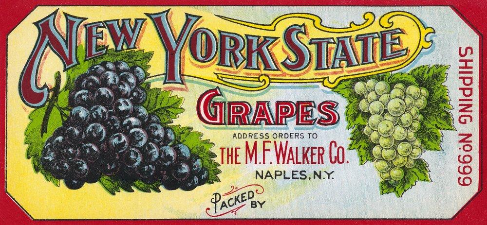 品質のいい Napels、ニューヨーク – New Print York 54 Stateブドウラベル – 9 x 12 Art Print LANT-19330-9x12 B01MG3E3E3 36 x 54 Giclee Print 36 x 54 Giclee Print, おひさまくらぶ:feaed966 --- consumer1st.in