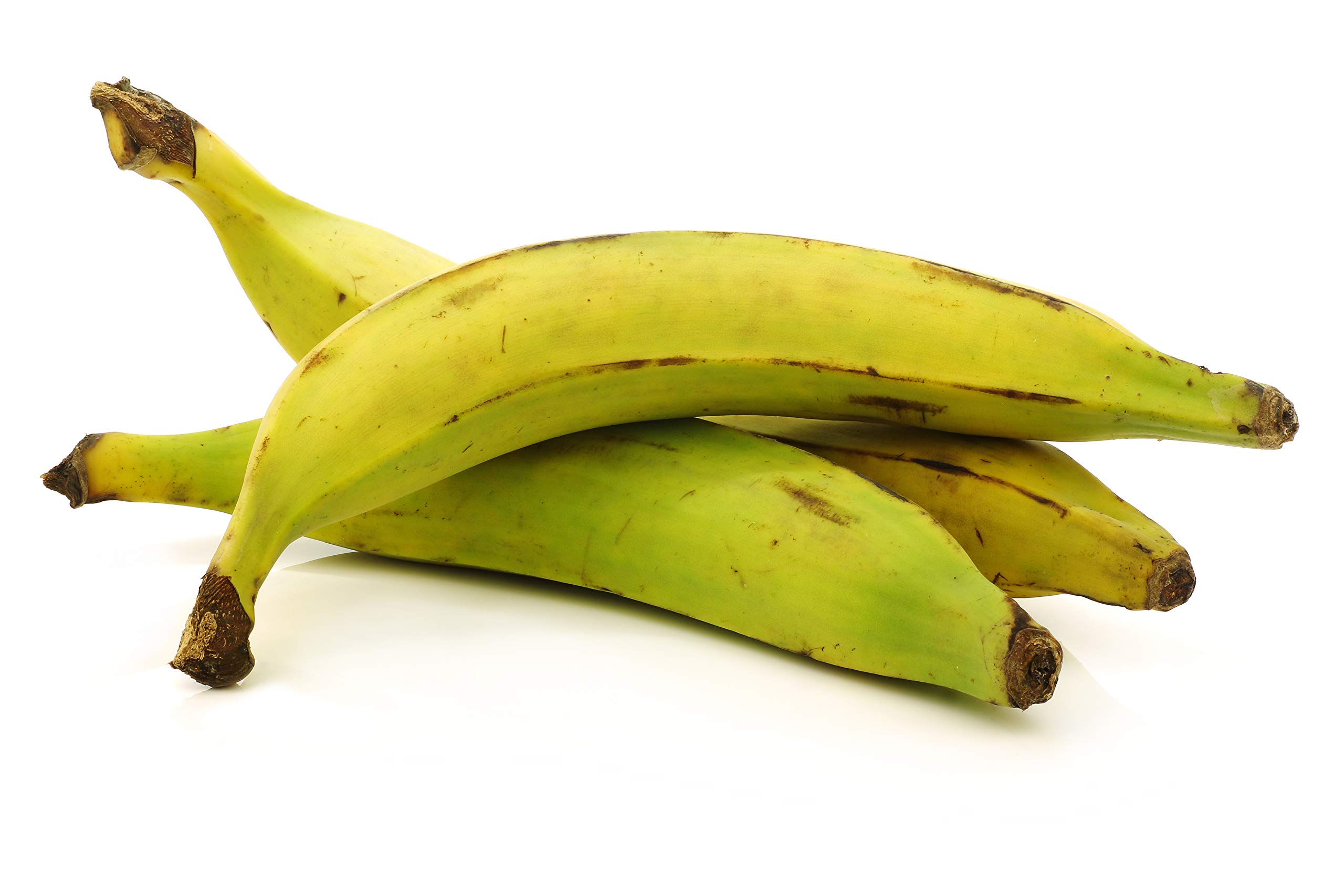 Fresh Whole Plantains (5lb) Tropical Importers