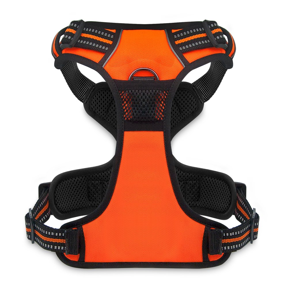 Best Pet Supplies No Pull Front Range Adjustable Harness with 3M Reflective Technology, X-Small, Orange