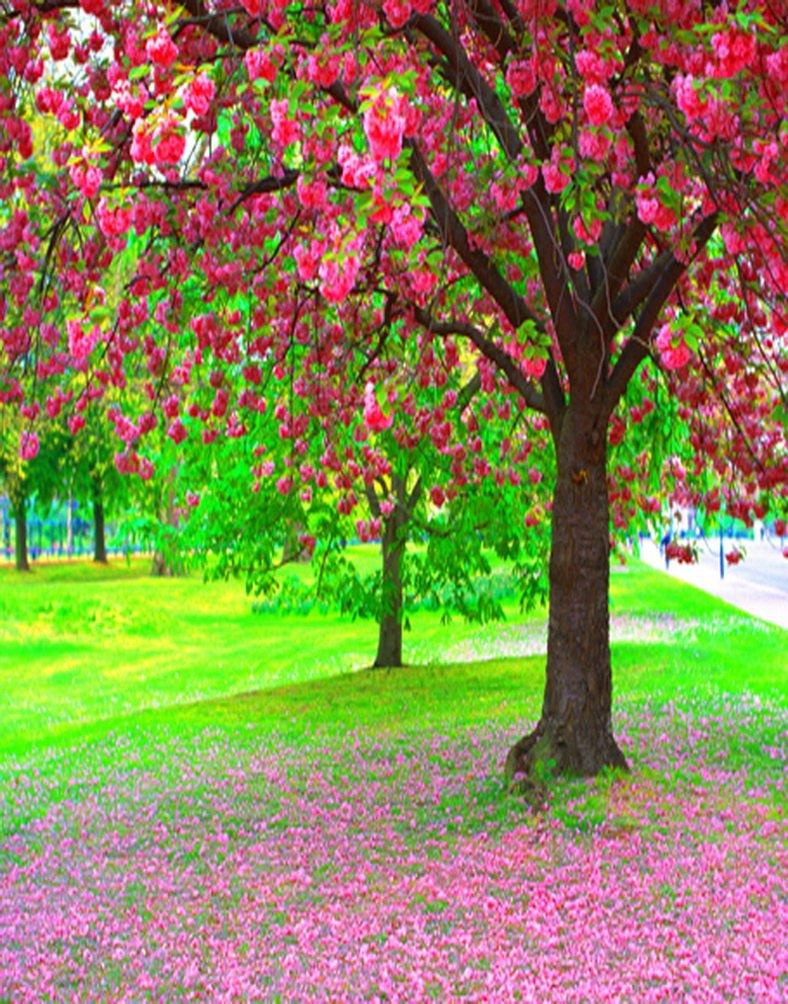 風景ピンク花ツリー写真の背景幕写真小道具Studio背景5 x 7ft   B01HWJRF1I
