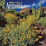 Arizona, Wild & Scenic 2017 Mini 7x7 (Multilingual Edition)