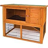 Domestic Pet Rabbit Hutches Premium Plus Penthouse Rabbit Hutch Interaction