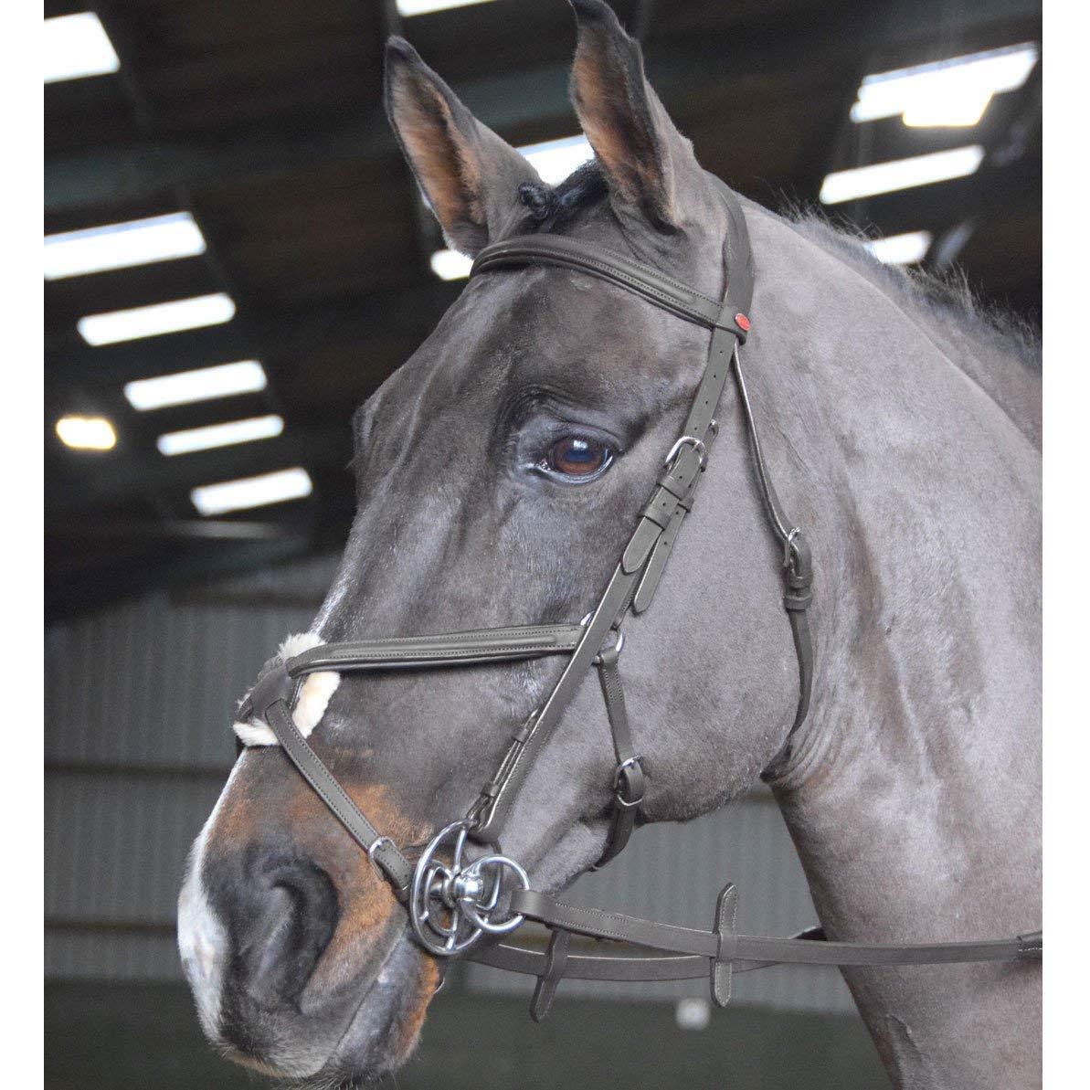 basta comprarlo John Whitaker Ready to Ride - Briglia Briglia Briglia Messicana per Pony, colore  Nero  risparmia il 35% - 70% di sconto