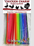 20 Chicken Charm ™ Poultry Leg Bands - Fit Sizes 7 to 14 - Includes Americas Favorite Super Hero's