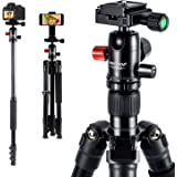 "MACTREM 2019 Camera Tripod - 62"" Lightweight Travel Tripod w/ [Stable Plus] Tech, 360 Ball Head & Phone Holder, Heavy Duty Aluminum DSLR Camera Tripod for Canon Nikon Studio Camcorder, Classic Black"