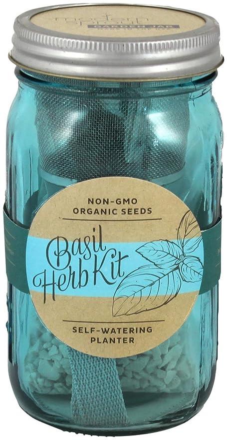 Amazon Com Modern Sprout Garden Jar Basil Home Kitchen