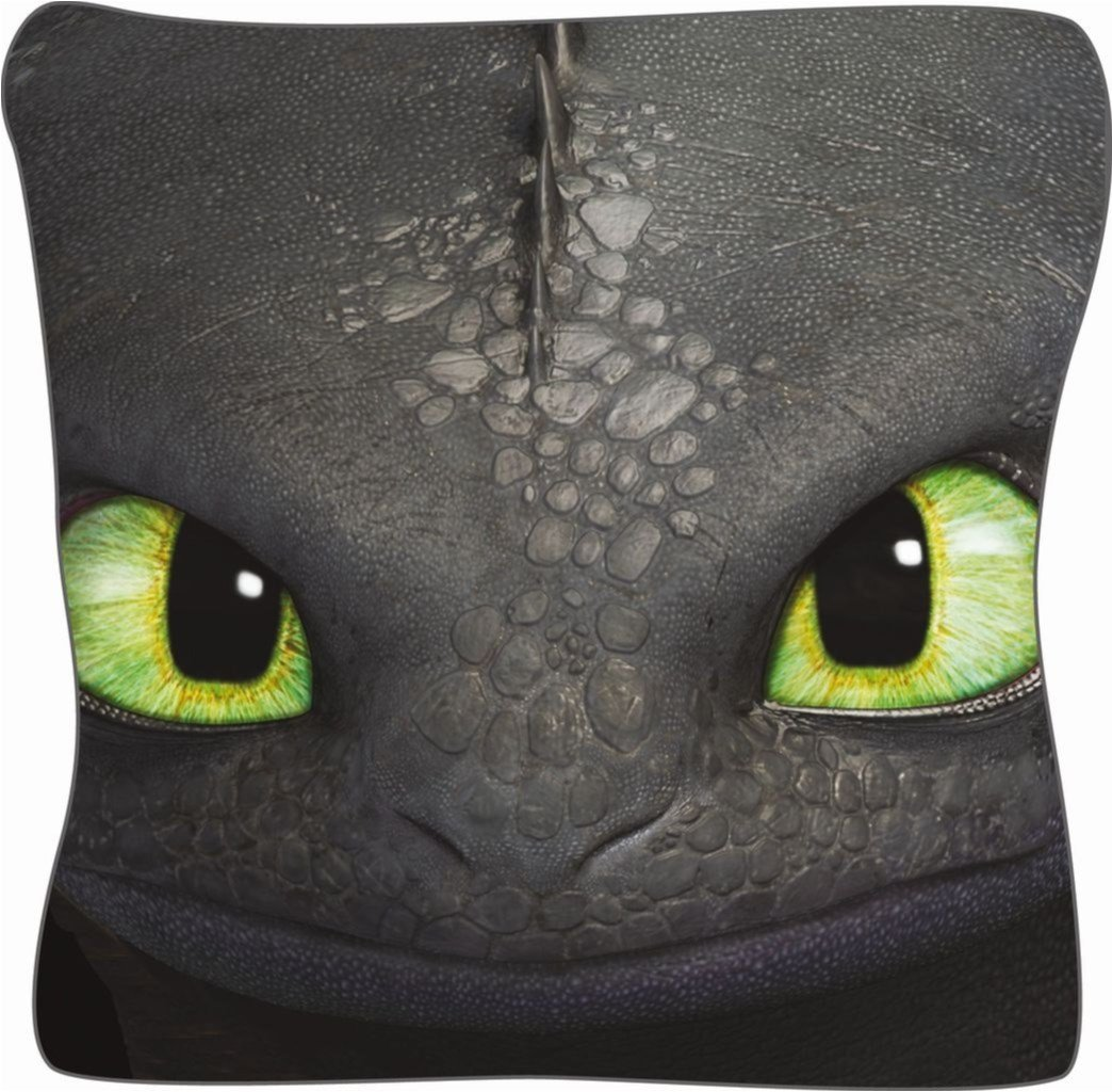 Dreamworks Dragons Krokmou Toothless coussin 40 cm Unbekannt