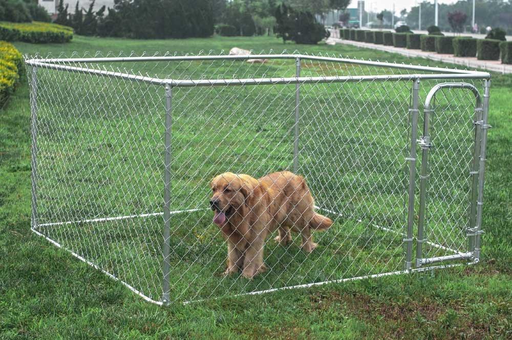Amazon.com  ALEKO Dog Kennel 7.5 x 7.5 x 4 Feet DIY Box Kennel Chain Link Dog Pet System Run for Chicken Coop Hens House  Dog Kennel Outdoor  Pet ... & Amazon.com : ALEKO Dog Kennel 7.5 x 7.5 x 4 Feet DIY Box Kennel ... Aboutintivar.Com