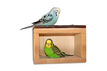 Other Bird Supplies Pet Supplies Lower Price with 2 X Small Parakeet Breeding Boxes Aviary Lovebird Budgies Great Varieties