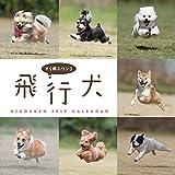 飛行犬カレンダー2019 ([カレンダー])