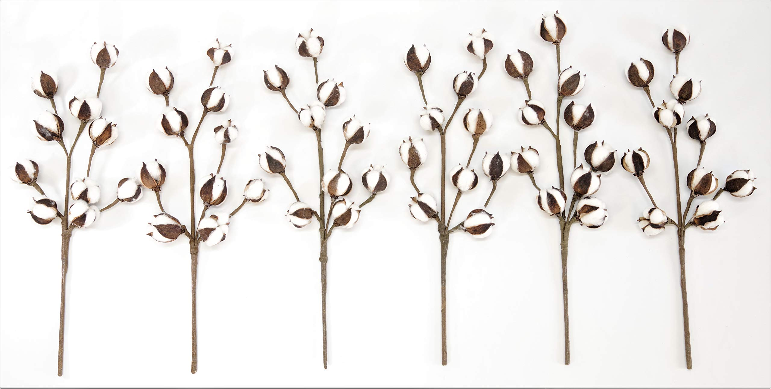 Silvercloud Trading Co. Cotton Stems - 6 Stems/Pack - 10 Cotton Buds/Stem - 20'' Tall - Farmhouse Style Floral Display Filler - Wedding Centerpiece