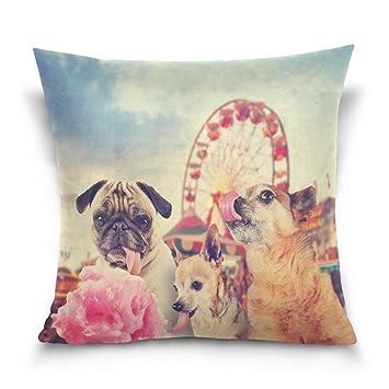Sula-Lit - Funda de Almohada Decorativa para cojín Cuadrado, diseño Vintage de Hipster Chihuahua Pug Perro sofá Cama Funda de Almohada (45,72 x 45,72 cm): ...