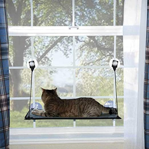 XC Gato Cama Gato Gato Hamaca Gato Hamaca Hamaca Hamaca Gato Hamaca Desmontar Y Lavar Super Aspirador Gato Colchón: Amazon.es: Productos para mascotas