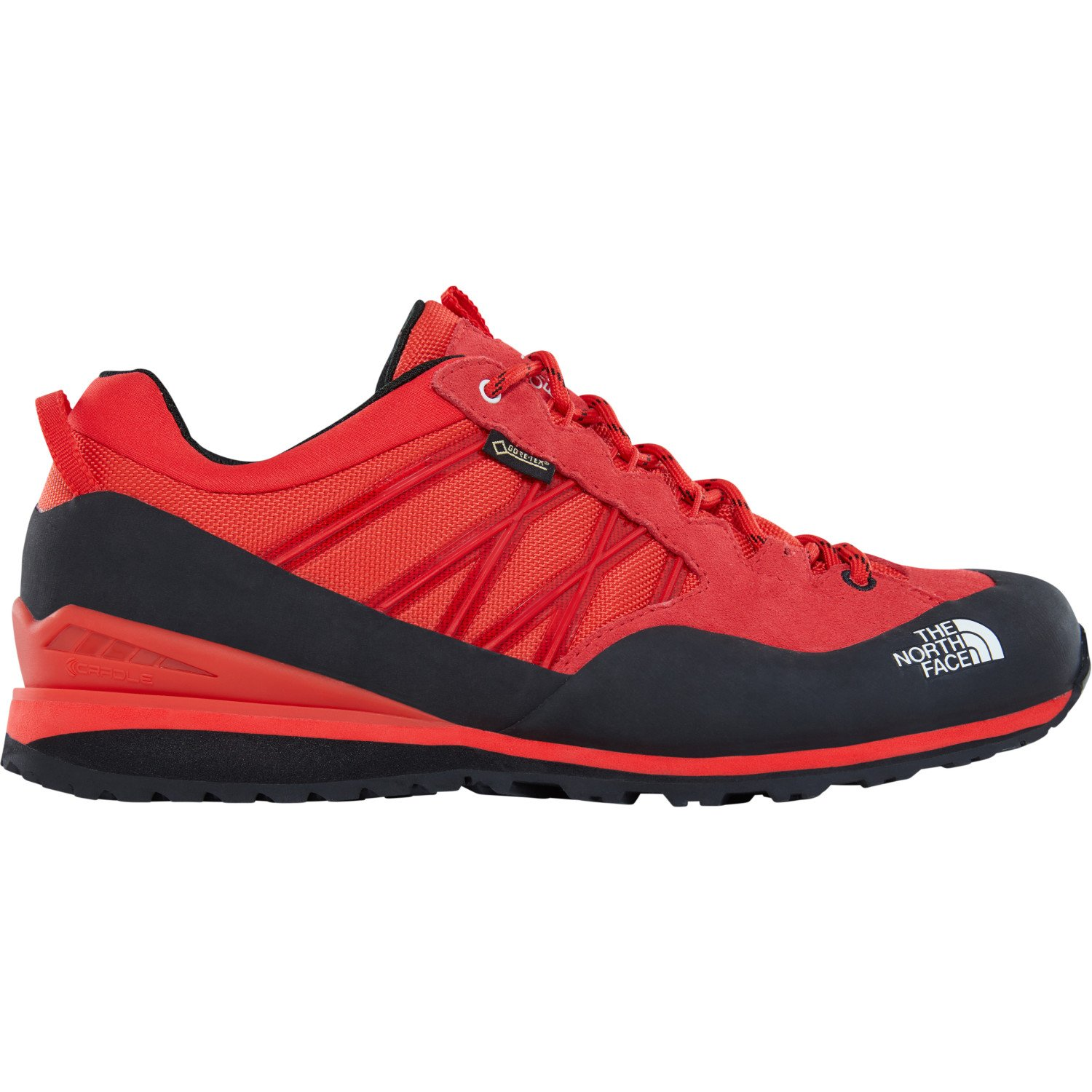 THE NORTH FACE Herren M Verto Plasma Ii GTX Wanderschuhe