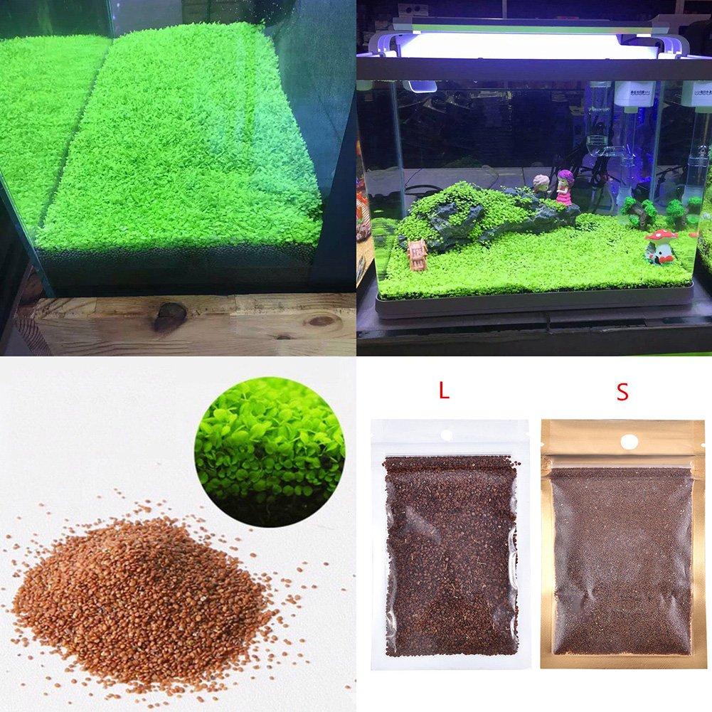 水族館水生植物シードダブルリーフカーペットWater Grass、魚タンクRock芝庭装飾 Large Leaf B074V4T1Z2 Small Leaf  Small Leaf