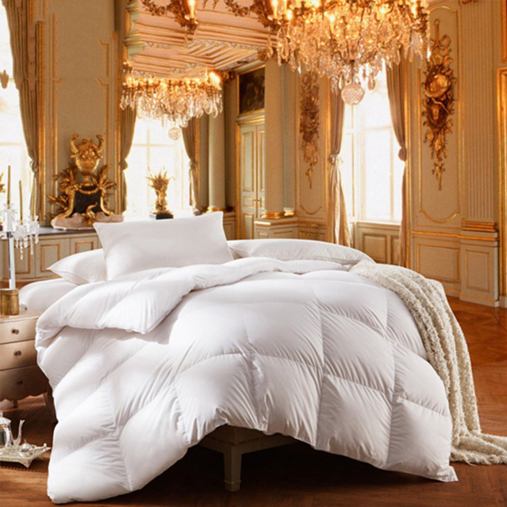 Quilt Breathable soft duvet White feather-A 220x240cm(87x94inch) by WENXXXXX (Image #2)