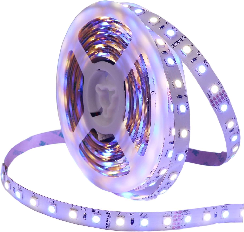 LTRGBW super brillante 5050 SMD 24V RGBWW tira del LED de iluminación 360LEDs 5m 5050 SMD flexible RGBW de la cinta de la cinta de la lámpara RGB blanco cálido (24V 360leds Non-waterprrof, RGB+White)