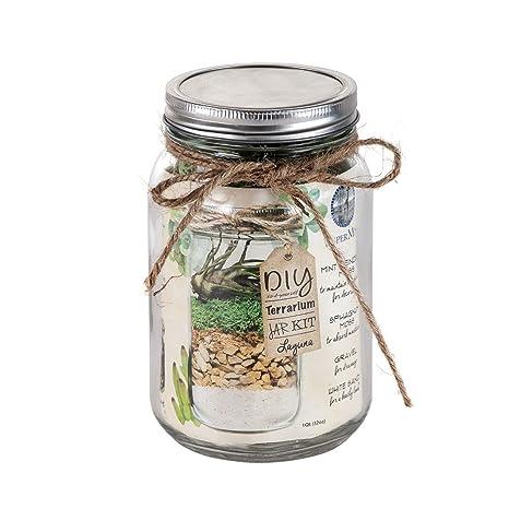 Amazon Com Diy Mason Jar Terrarium Kit The Laguna Garden Outdoor