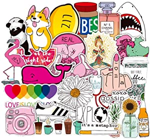 Cute Stickers 50 Pack,Water Bottle Stickers, Vinyl Waterproof Stickers, Decals for Laptop, Luggage, Car, Skateboard, Motorcycle, Bicycle Decal Graffiti Patches …