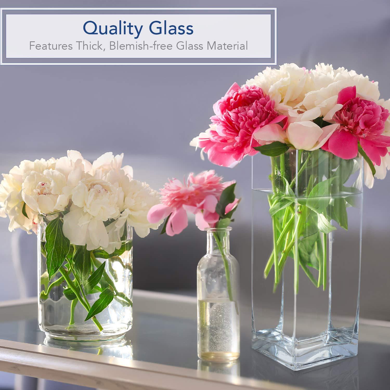 Royal Imports Jarrón de vidrio de flores con eje central decorativo para boda o hogar 12 Pulgadas Claro: Amazon.es: Hogar