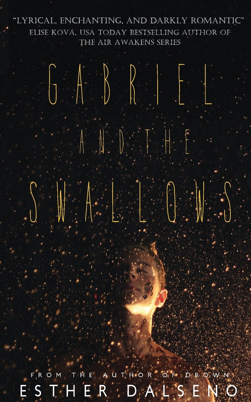 Gabriel and the Swallows ebook