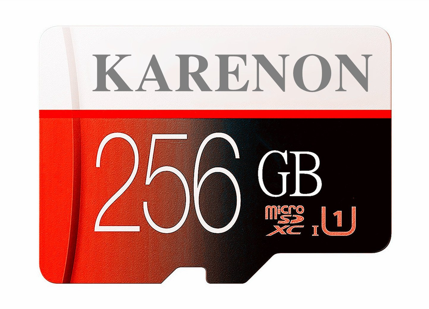Karenon 256GB Micro SD SDXC Memory Card High Speed Class 10 with Micro SD Adapter(D49-KR256)