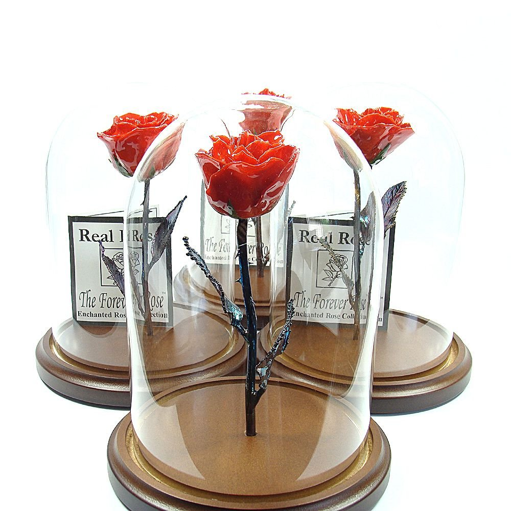 Enchanted Rose - The Beauty and the Beast inspired Forever Rose - This is a Real Rose! (Red) by The Forever Rose
