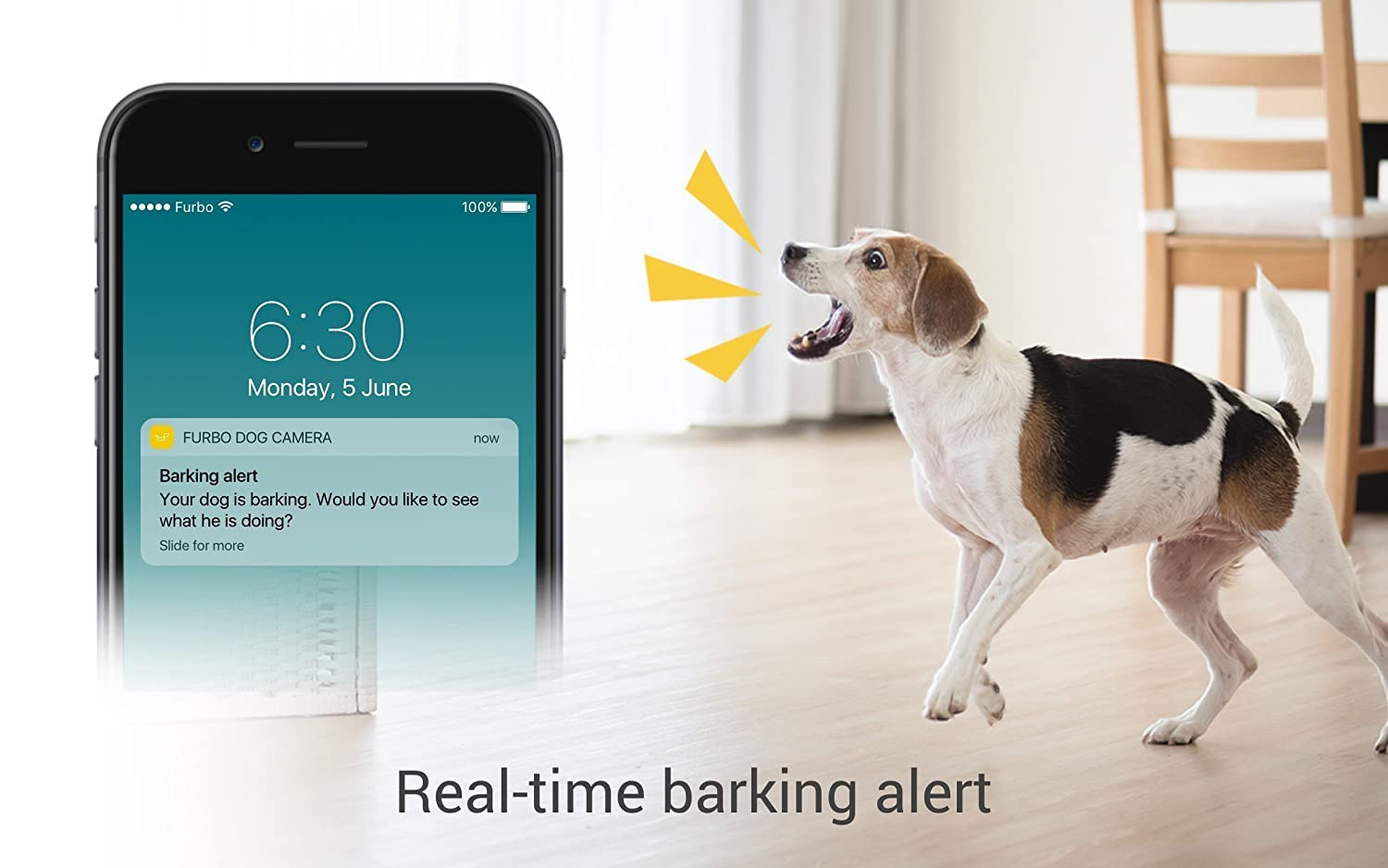 pet camera reviews : Furbo - Real time alert and smart notification