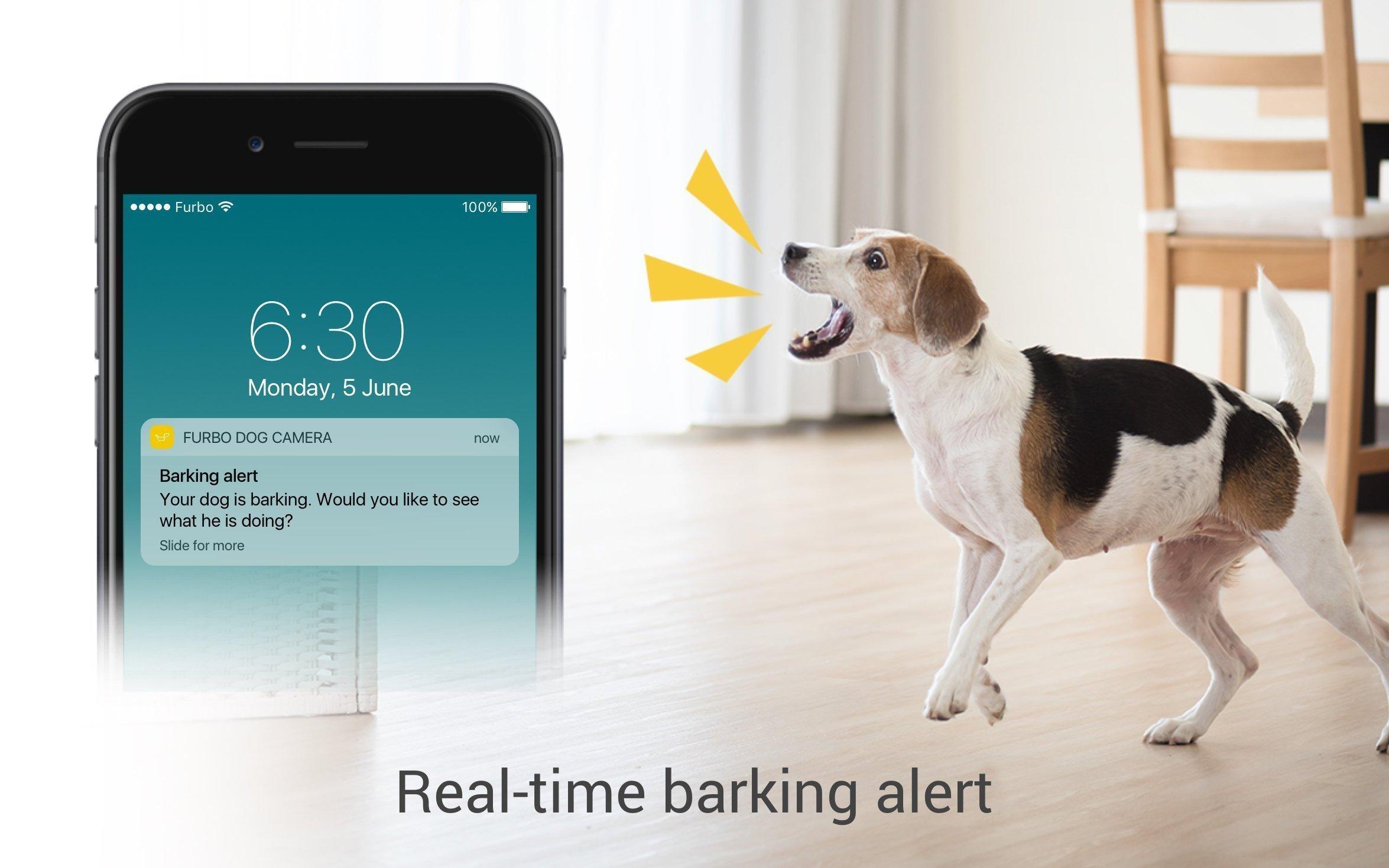 Full HD Wifi Pet Camera and 2-Way Audio Treat Tossing Furbo Dog Camera