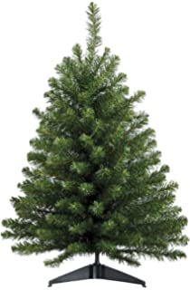 Amazon.com: 2 foot Alberta Spruce Unlit Christmas Tree from Target ...