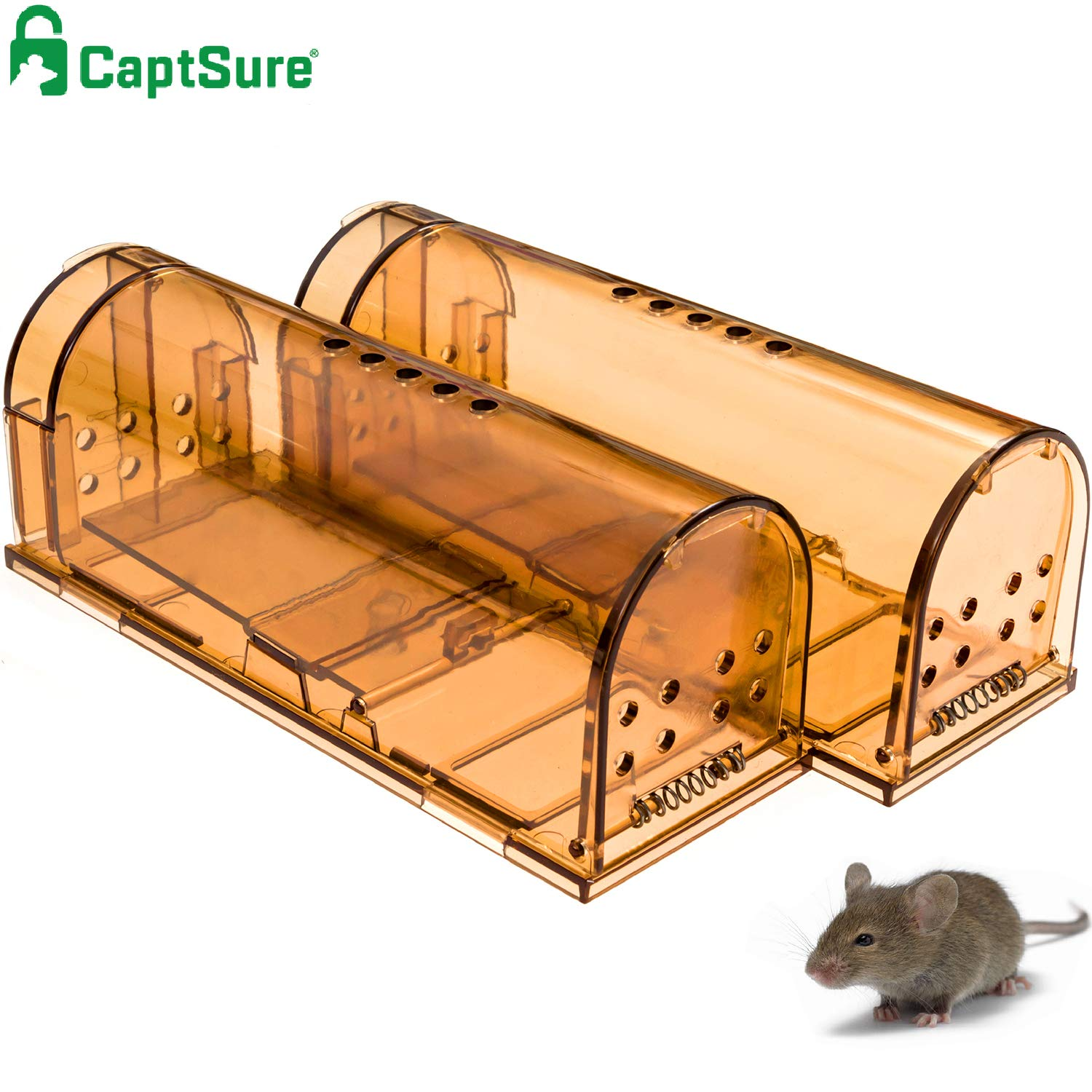 CaptSure Original Humane Mouse Traps, Easy to Set, Kids/Pets Safe, Reusable for Indoor/Outdoor use, for Small Rodent/Voles/Hamsters/Moles Catcher That Works. 2 Pack (Small) 71VxMhoaOGL