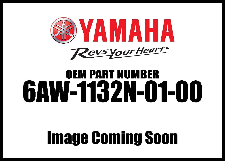 Yamaha 6AW-1132N-01-00 Anode 4; 6AW1132N0100 Made by Yamaha