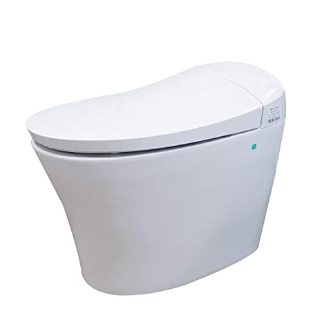 Phenomenal Dyconn Faucet Df 820Za Arial Tankless All In One Combo Bidet Smart Toilet White Gmtry Best Dining Table And Chair Ideas Images Gmtryco