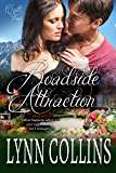 Roadside Attraction (Castle View Series Book 2)