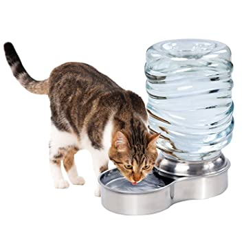 Amazon.com : Stainless Steel Pet Waterer Dog Cat Water Fountain Bowl ...