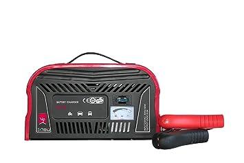 Vip - Cargador de batería 8 Amp, carcasa de Chapa de acero ...