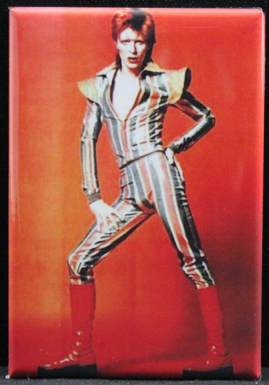 David Bowie / Ziggy Stardust Refrigerator Magnet. Legendary Performer!