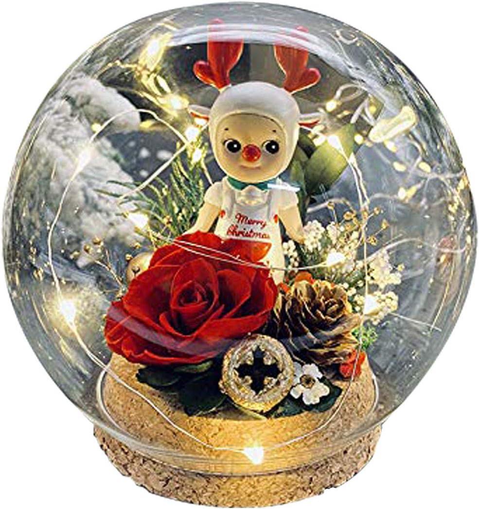 JFlower Caja de Regalo de Joyería con Flor Preservada, Caja de Regalo de Rosa Eterna para Ella/Esposa/Novia/Mamá en Cumpleaños/Aniversario/Día de San Valentín (Rojo-1)