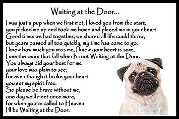 waiting at the door dog poem
