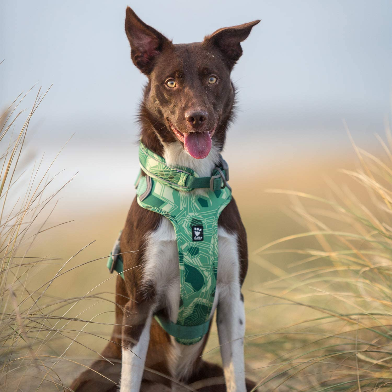 Hurtta Weekend Warrior - Arnés para Perro con Estampado de 3 m ...