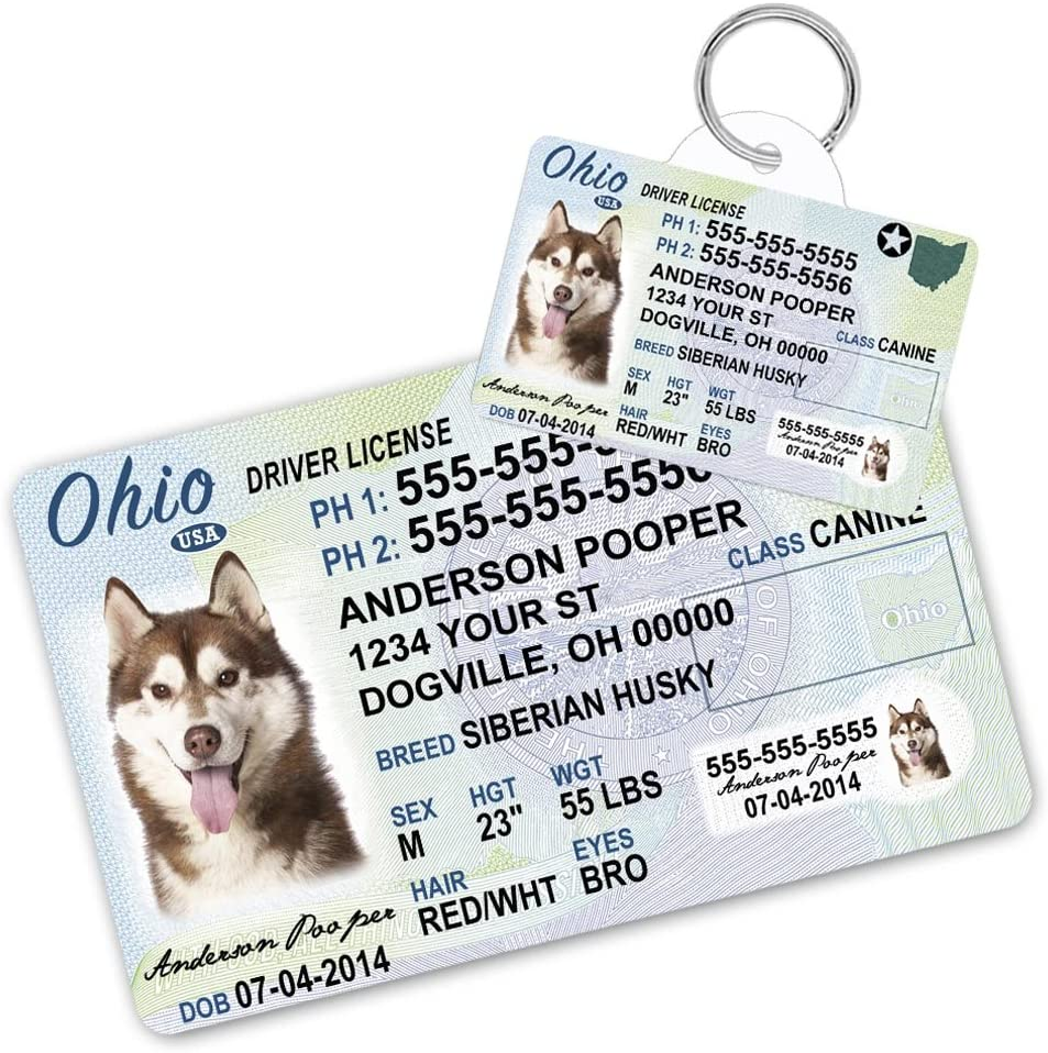 WILL BARK FOR FOOD Custom Personalized Pet ID Tag for Dog and Cat Collars