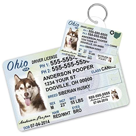Custom And Supplies Card - Dog Ohio Tag Amazon Id Wallet Pets Cat Driver com Dogs Tags License Pet For Cats Personalized